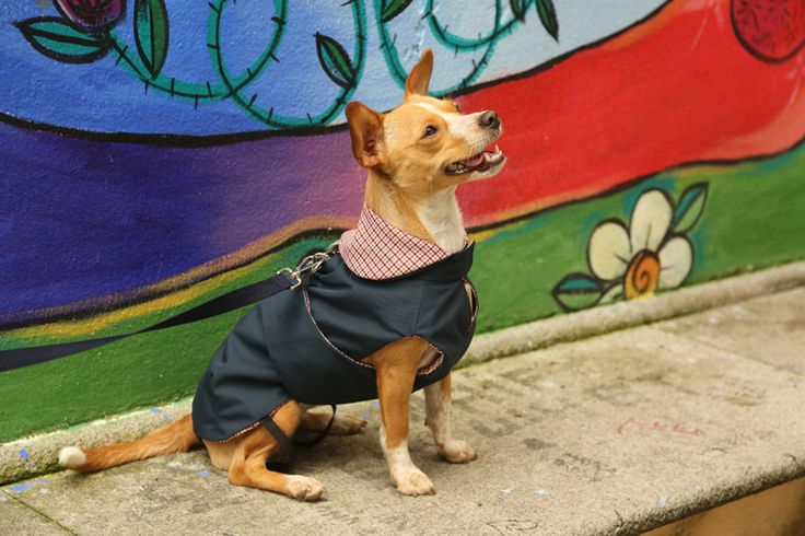 Blu Notte Jacket with Red&Orange wool Houndstooth