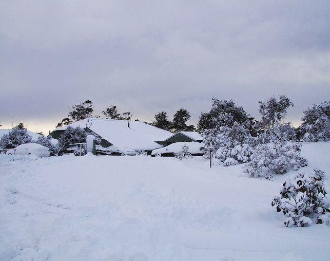 Driving through snow in Tasmania | Cradle Mountain Hotel Blog