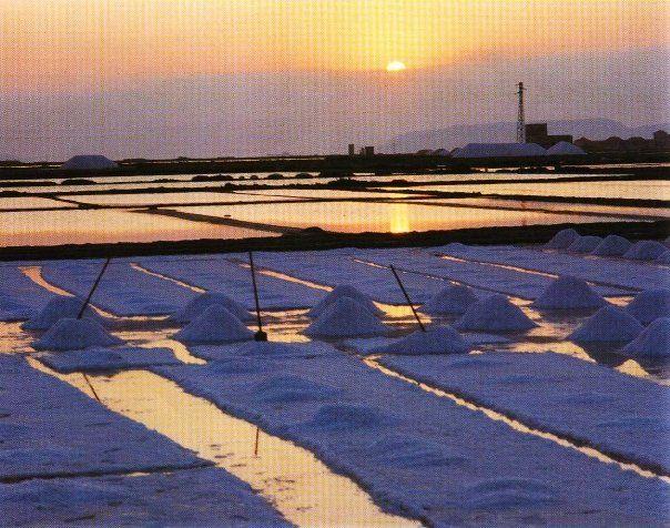 Cultivation of Salt - Trapani - Sicily