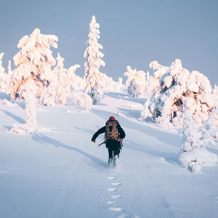 Riisitunturi National Park - Finland