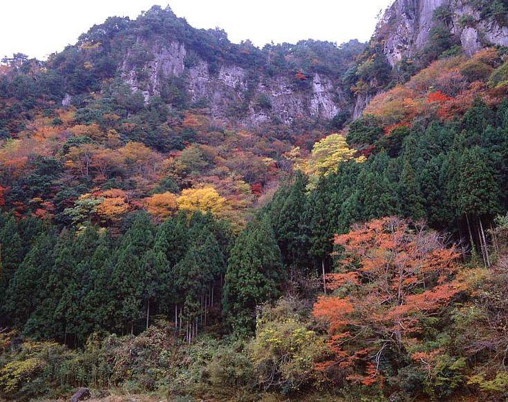 曽爾村 香落渓 紅葉 soni:beautiful villages