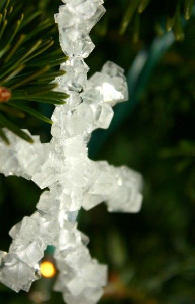 Here's something that might be fun to make with the kiddies (make sure they're old enough to know not to drink it), From Craft Thyme:  Make crystal ornaments from Borax.