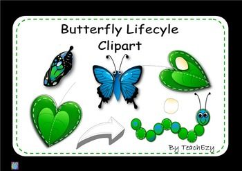 FREE Butterfly Life cycle Clipart is a useful tool when teaching children about life cycles. We have included two types:   PNG with transparent backgrounds   JPEG with non-transparent backgrounds.  PLEASE VISIT OUR STORE for more clip art  http://www.teacherspayteachers.com/Store/Teachezy  Follow us to see more of our clip art coming sooooon.