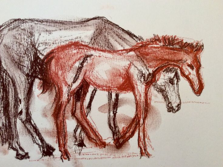 Mare and foal..conte crayon drawing