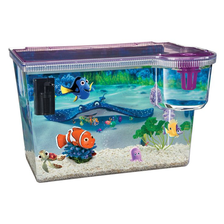 9 best fish tanks images on pinterest fish aquariums for Fish tank supplies