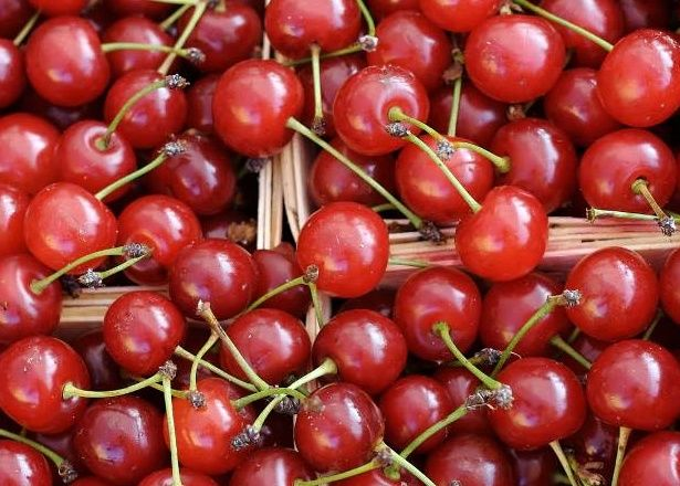 višne,zdravie,ovocie,fruit
