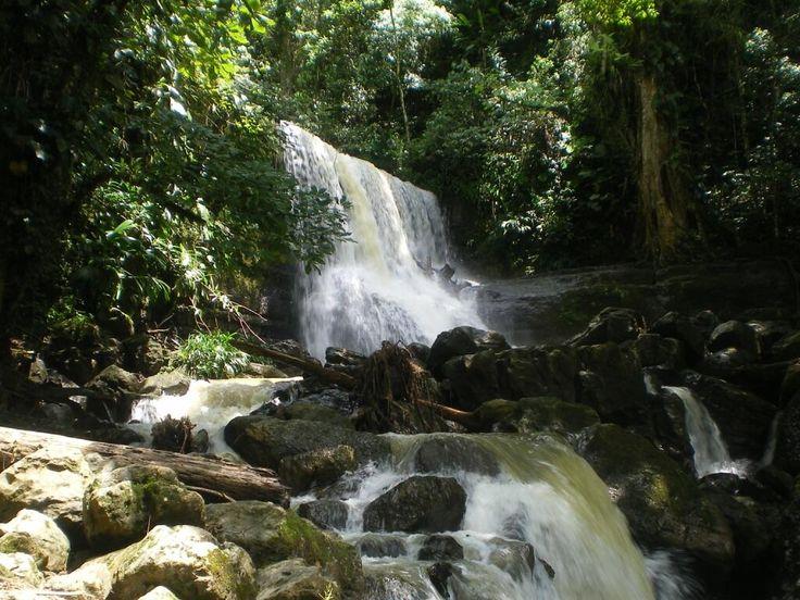 Cascadas de Juan Curì  Pàramo Santander Colombia Foto Alejo Portilla