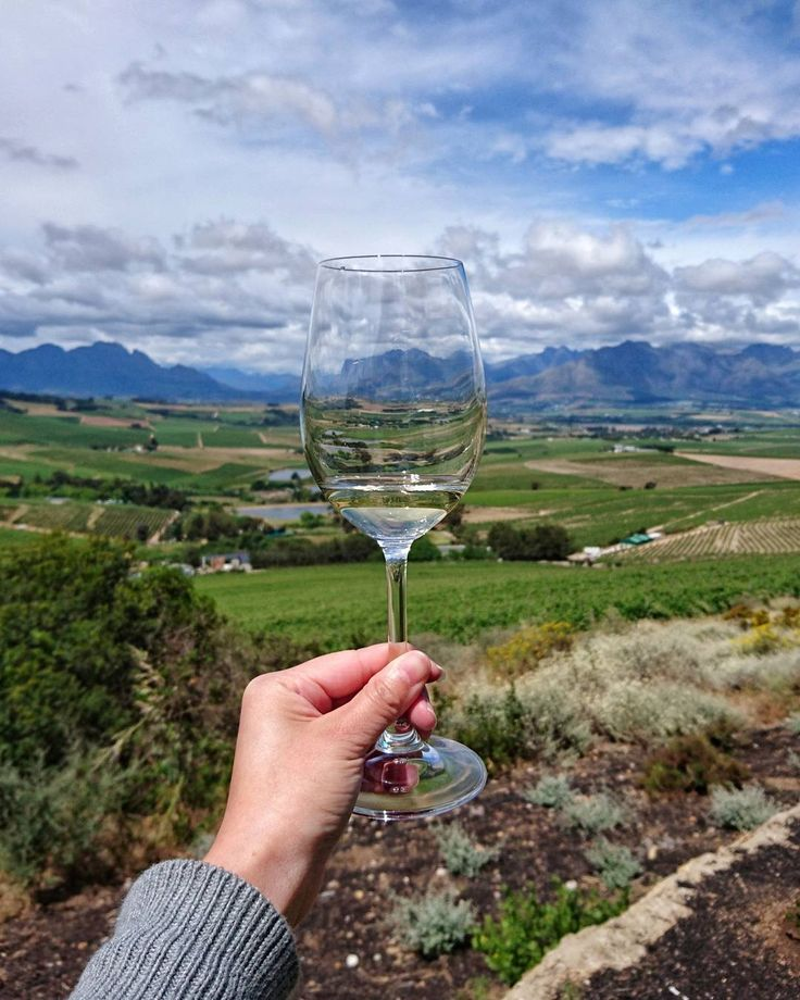 Looking for winter sun? Head to Stellenbosch for good food, great wine   Metro News