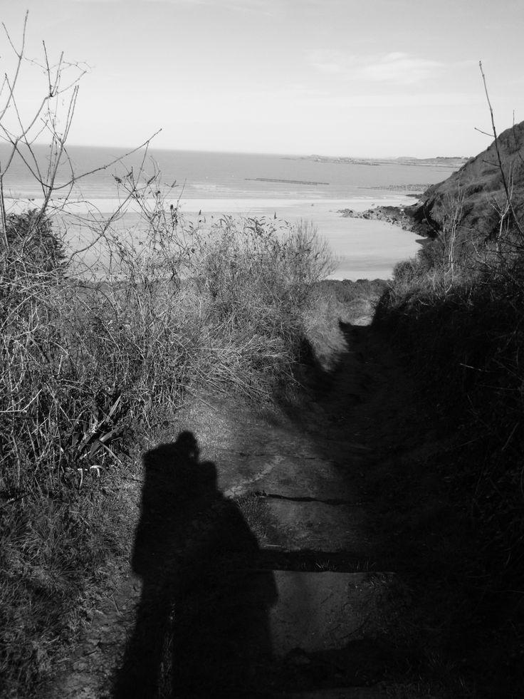 le sentier des ombres