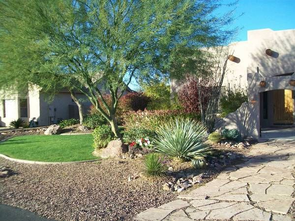 Best 25 cheap landscaping ideas ideas on pinterest diy for Inexpensive landscape design