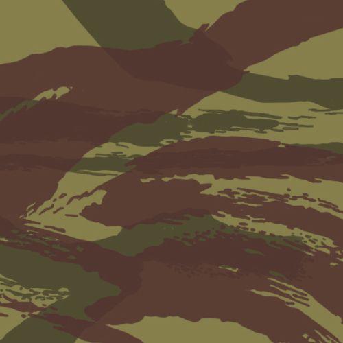 French lizard pattern camo.jpg