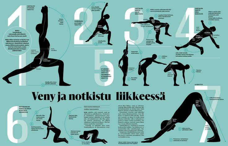 Dynaaminen venytys. Helsingin Sanomat. Interaktiivinen grafiikka tässä linkissä: http://www.hs.fi/hyvinvointi/art-2000005194680.html