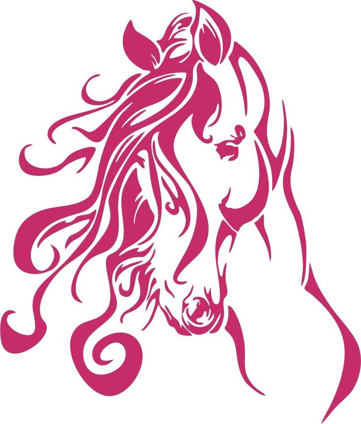 Horse Head Western Rodeo Cowgirl Car Truck Window Laptop Vinyl Decal Sticker #Oracal