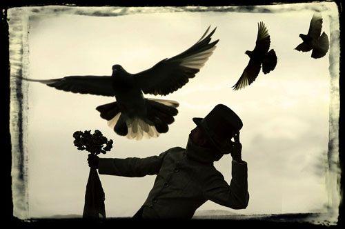 """""""Todos somos palomas"""" - 2004/2004 - Coxoacan, Distrito Federal, Mexico - Original digital  - Imagen modificada digitalmente - Derechos reservados de todo el Web Site © Copyright 2008 Pedro Meyer"""
