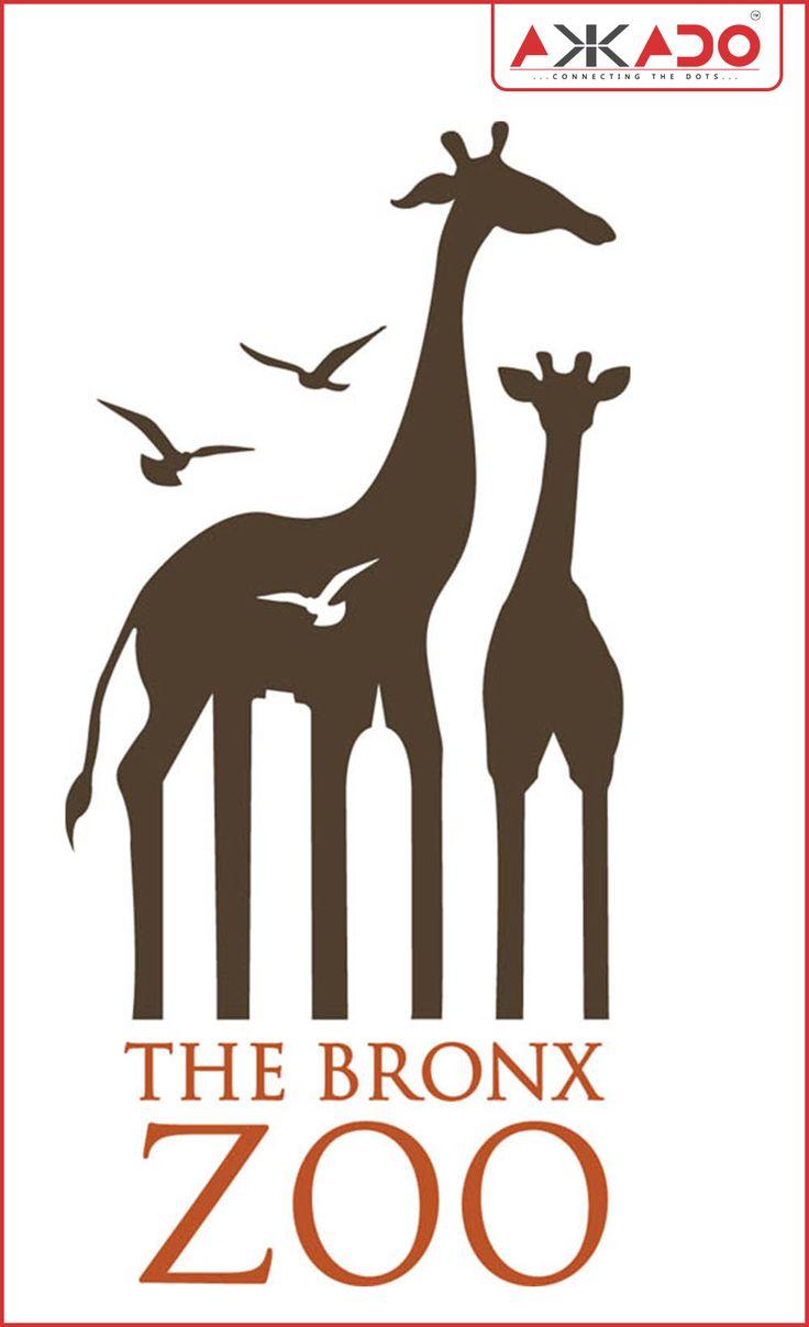 The #BronxZoo! #Akkado #ConnectingtheDots #LogoStory