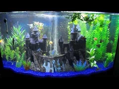 My New 46 Gallon Bow Front Aquarium Fish Tank Themes
