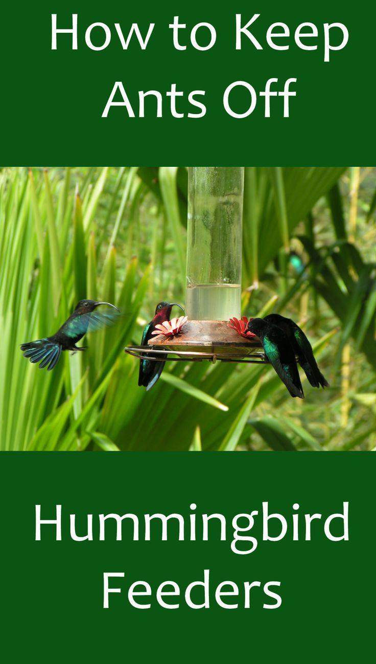 how to use humminbird 385ci