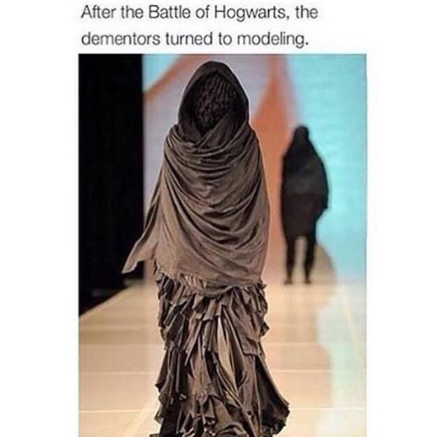 After the  Battle of Hogwarts, the dementors turned to modeling.