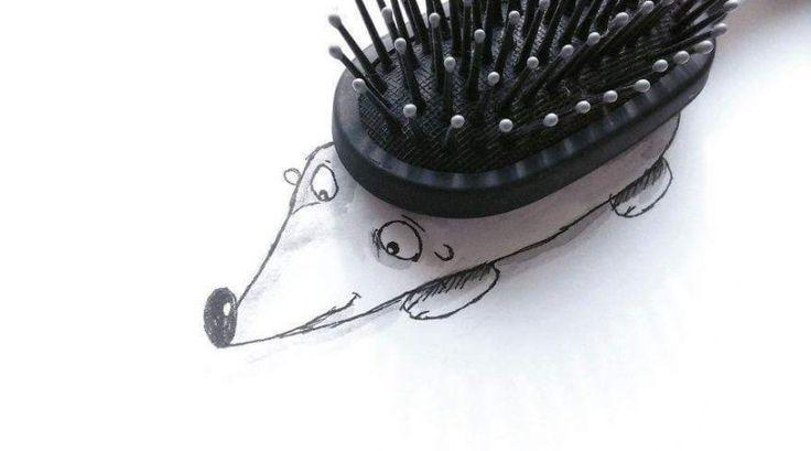 Saç Fırçası ve Kirpi