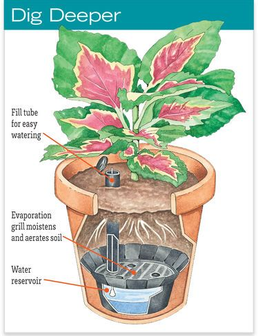 Self-Watering Pot Reservoirs - Make my own.......Make Any Pot Self-Watering. Transforms any container into a convenient, self-watering planter Reduces watering chores and provides a consistent water supply that helps plants thrive Built-in fill tube and handy water level indicator