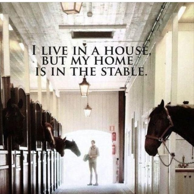 I live in a house but my home is in the stable....except that I do actually live in the stable...