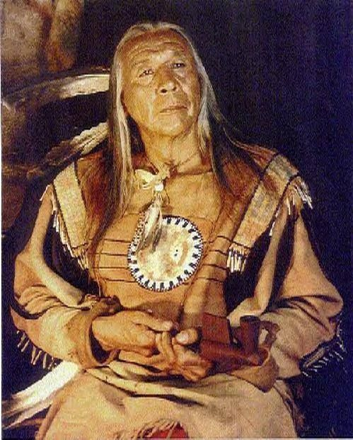 Floyd Crow Westerman, as Lakota Chief Ten Bears in the film Dances With Wolves.