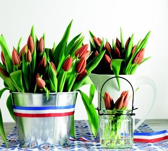 De mooiste Hollandse bloemen vind je bij Jumbo!