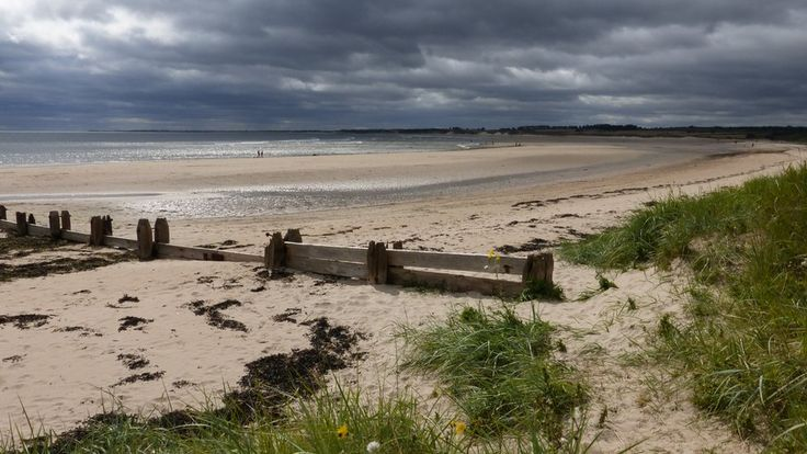 Dark grey thunder-clouds over a white sandy beach, the sea lapping at the shores. Grass on the banks in the foreground. via Anne Higgins, Alnmouth, Nothumberland, 25/08/14