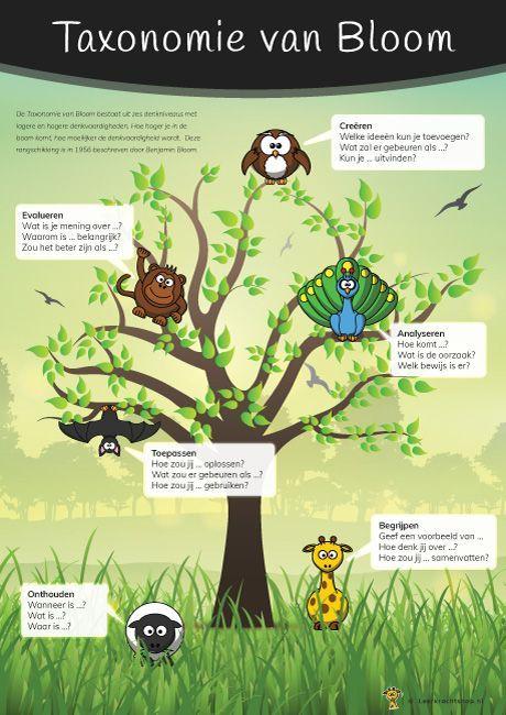 Nieuw: Poster Taxonomie van Bloom