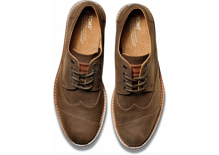 Chocolate Aviator Twill Men's Brogues top: next works shoes?!