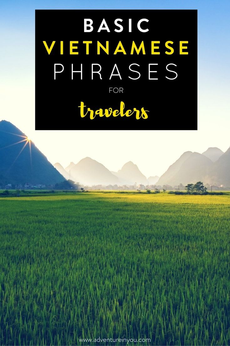 Planning a trip to Vietnam? Here are some essential words and phrases to help you get by!