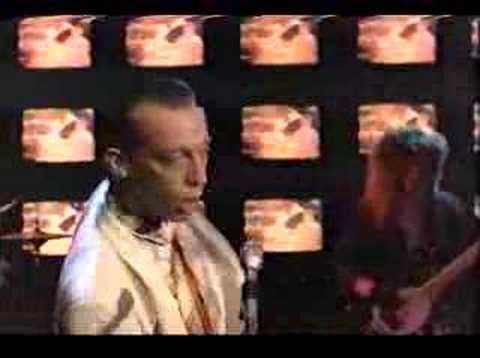 Wild Wild Life: theTalking Heads best.  This is an entertaining video, from the movie True Stories.