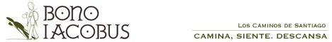 Este anuncio del Bono Iacobus nos parece pésimo por su excesiva sencillez gráfica y brevedad del texto, que impide que el anuncio refleje las aportaciones que te ofrece el bono. Mantiene a la gente desinformada.  Otro motivo muy importante es que la difusión de este bono solo tuvo lugar vía internet. El abandono de los otros medios de comunicación hace que la información no sea recibida ni por la mitad del número de peregrinos que cada año realizan el camino.