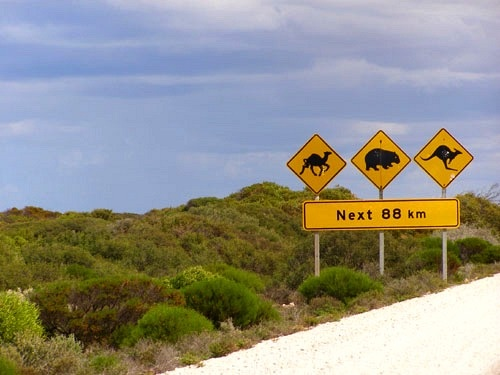 Iconic Road Signs Along the Nullarbor Plain, Australia