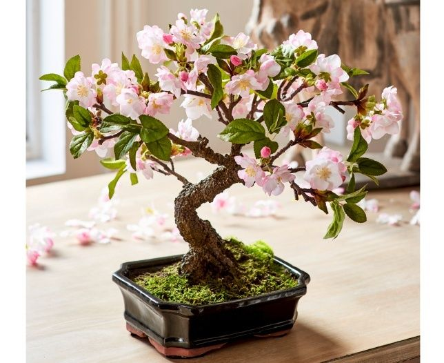 Cherry Blossom Bonsai Bloom Artificial Flowers Our Everlasting Silk Blossom Bonsai Arrangement Would Make The Perfect Gift For The Special Woman In Yo Arranjos