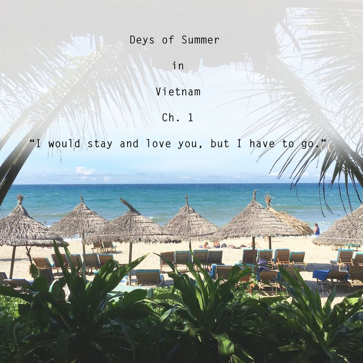 "Deys of Summer Travels to Vietnam - Ch.3/3  ""I would stay and love you, ..."