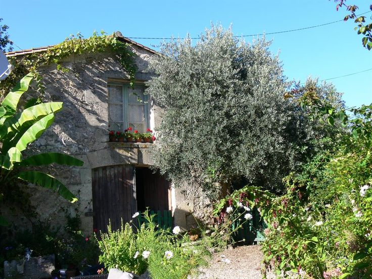 Holiday Gite for rent in Flaujagues, Castillon La Bataille, Gironde, Aquitaine FR5448