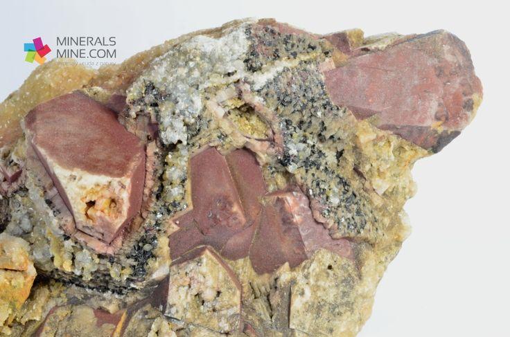 Żółty Kalcyt, Brązowe kryształy Dolomitu i czarny Hematyt      Pochodzenie: kłm. Dolomitu Rędziny, Rudawy Janowickie, Dolny Śląsk, Polska  Wymiary: 10.5 x 8.5 x 5 cm  Waga: 369 g  Wzór chemiczny: Dolomit CaMg[CO3]2  Minerały towarzyszące: Kalcyt, Hematyt