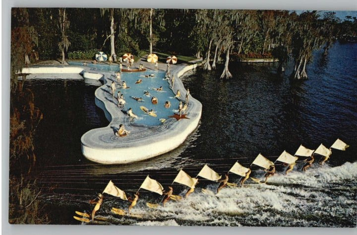 Esther Williams Swimming Pool Cypress Gardens Postcards Paper Pinterest Gardens Pools