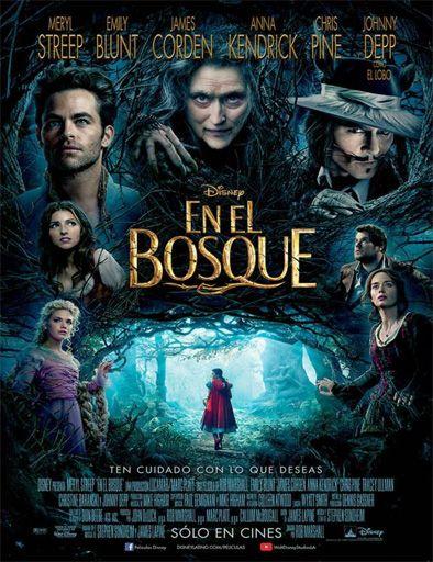Poster de Into the Woods (En El Bosque)