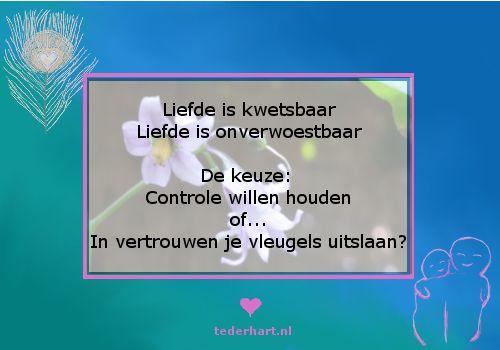 #citaten #liefde #kwetsbaar #kracht #vleugels