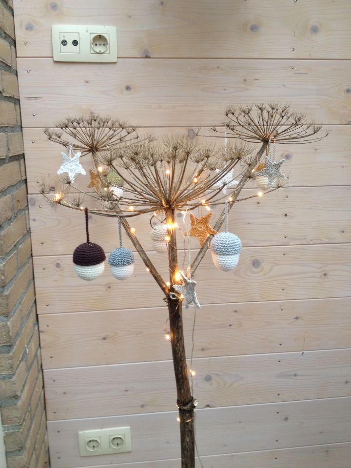 Bereklauw met lampjes