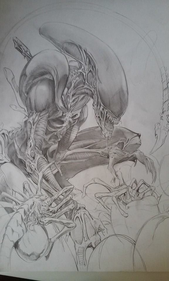 Xenomorph Chestburster Drawing 17 Best images about d...