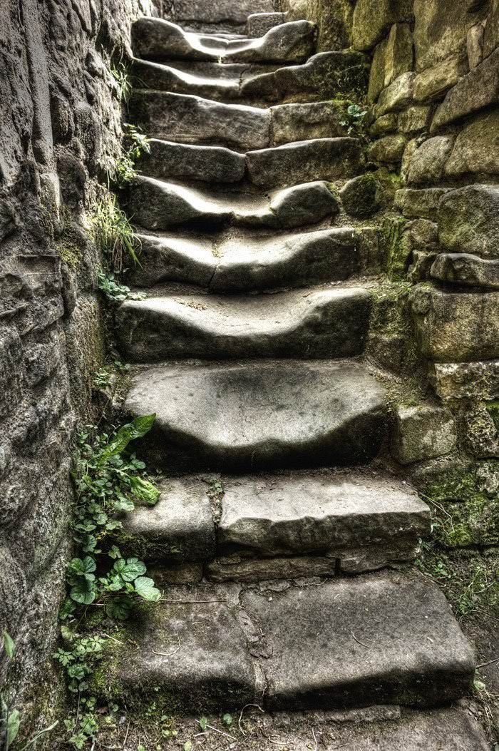 Stone stairs worn from years of footsteps and rain