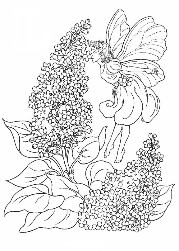 Lavender Fairy Color Sheet