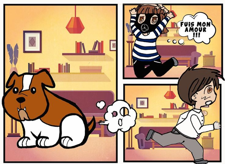 Bd- Bulldog anglais - pets