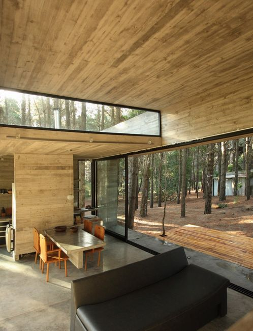modern wooden house in the woods.