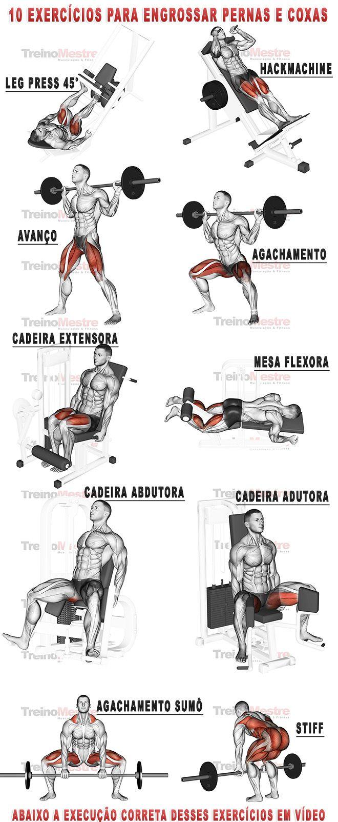 10 exercícios para engrossar pernas e coxas com vídeos (visitar artigo).  Mais…                                                                                                                                                                                 More