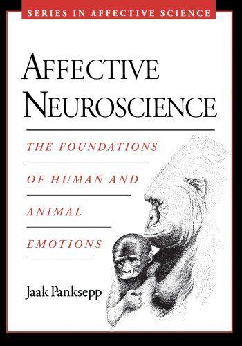 Las neuronas espejo y la inteligencia social en el aula | Filölearning