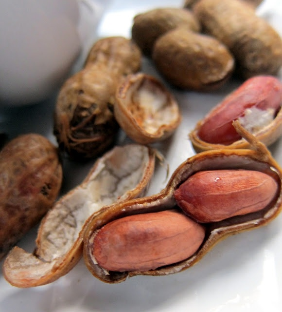 southern style slow cooker boiled peanuts omg